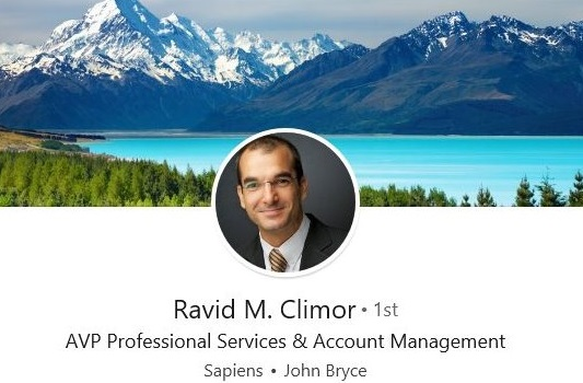 sample linkedin profile example tech consultant