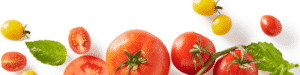 Linkedin Background image Tomato