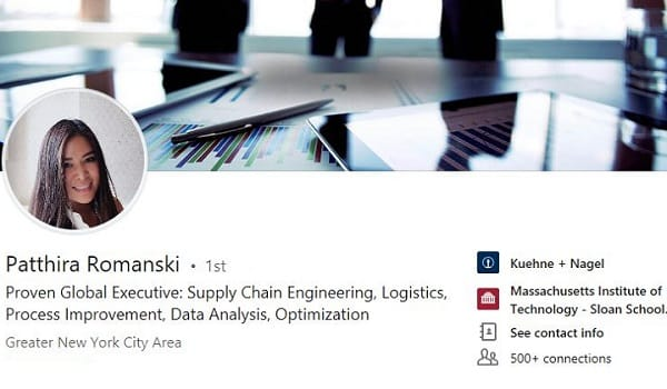 Linkedin profile summary example procurement logistics